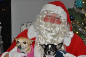 Santa Goes to the Dogs